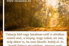 idézet_14
