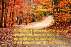 idézet_19